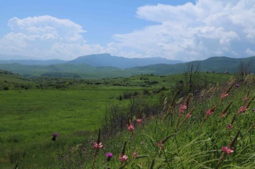 Prairie entre l'Arménie et l'Azerbaïdjan