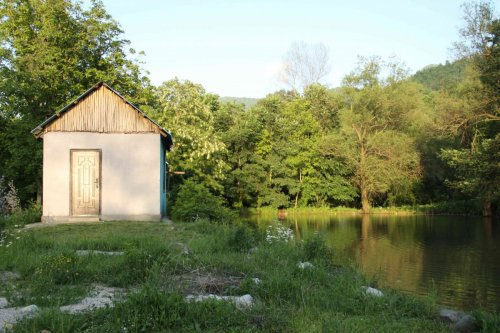 Soirée au bord de l'étang